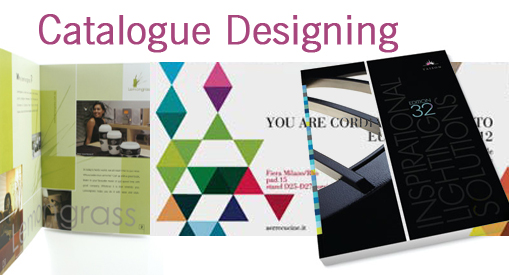Catalogue designing, Dynamic web site design, India